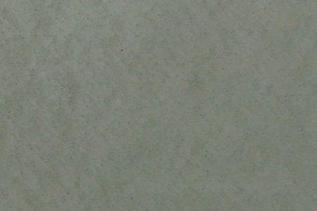 AM P50 G2157