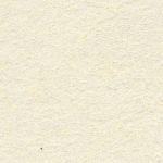 ECT01-N6217_BCMatt-Y2973